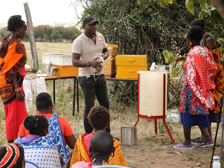 The Maa Trust Trains Maasai Women in Beekeeping