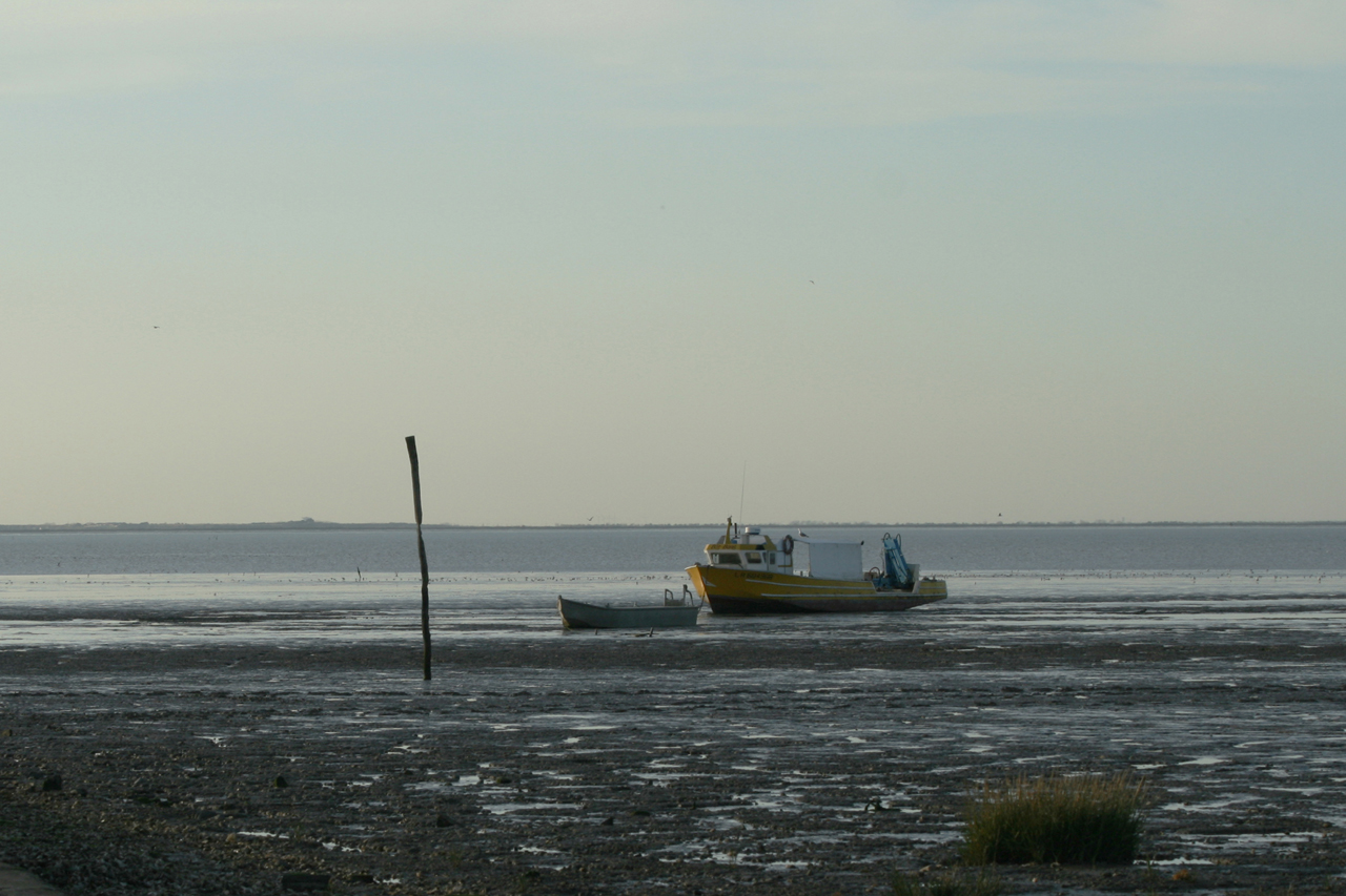 La baie de l'Aiguillon