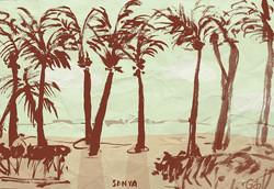 Vocation in Sanya