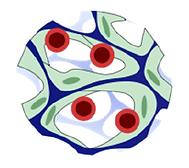 MIni Marrow logo.png