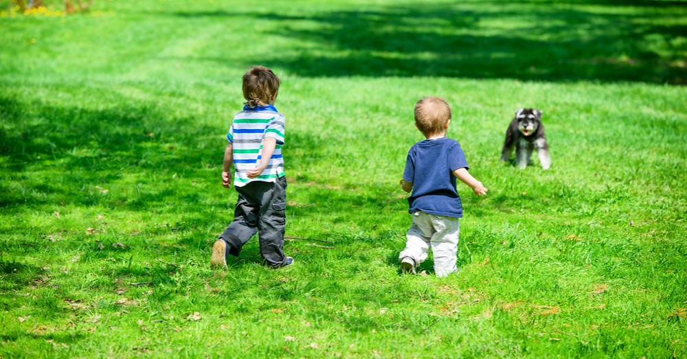 Benefits of Pets for Children with Special Needs inland respite socal