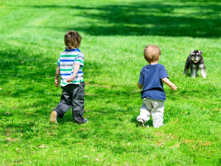 Benefits of Pets for Children with Special Needs