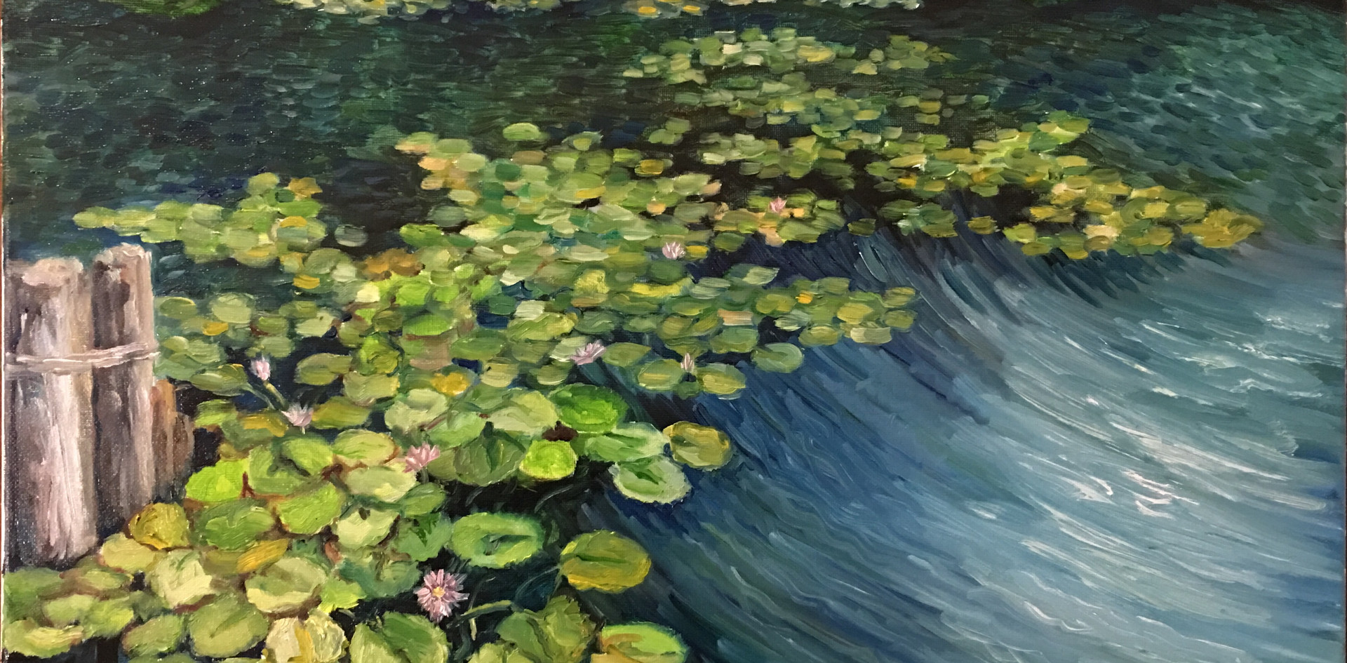 Waterlilies in the Breeze
