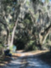 En Plein Air at Trail's End
