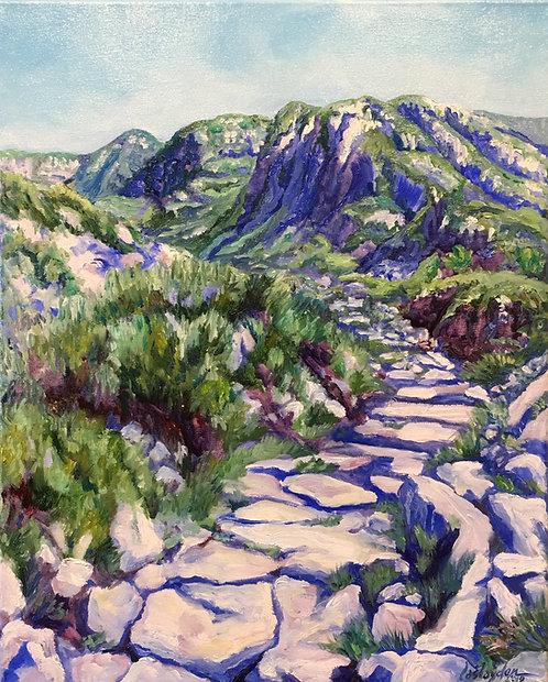 Roman Steps, Snowdonia, Wales