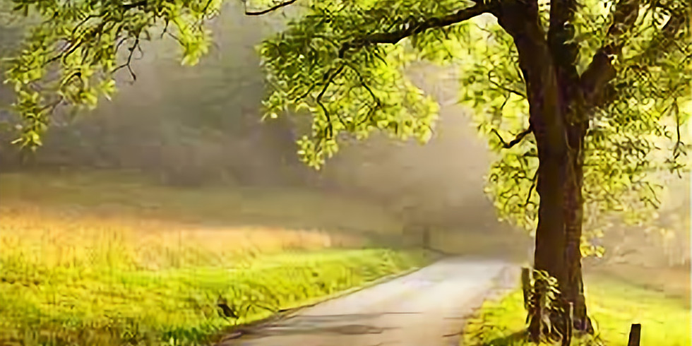 Se situer sur son Chemin de Vie … en 202 ...  NUMEROLOGIE  Où en êtes-vous sur le chemin de votre destinée ?