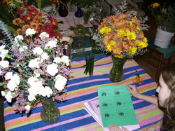 habitat flowers and pam
