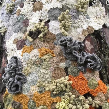 Hannah Streefkerk, Symbiosis Borås, 2017 (from google search for crochet art)