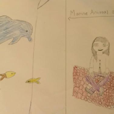 Ailey Haynes, Animal Rights