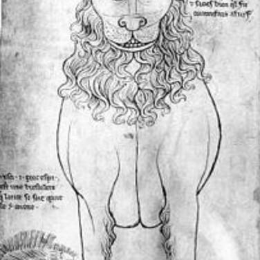 Villard Dâ Harnoncourt Lion