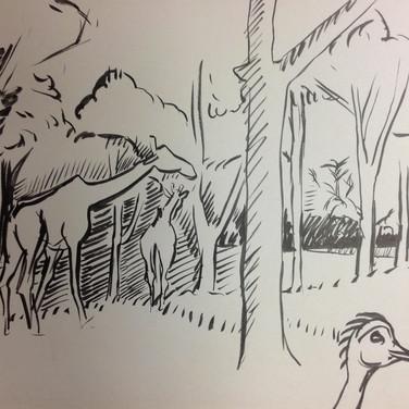 Marie Roberts drawing of Giraffes