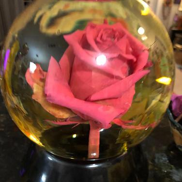 """Jennifer Dodson, """"Rose Globe"""""""