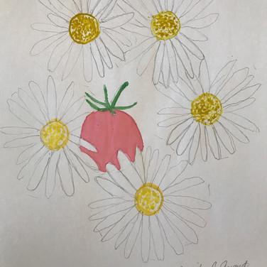 Marilyn August, Drawing Nature 3, Advanced Studio June 29, 2020