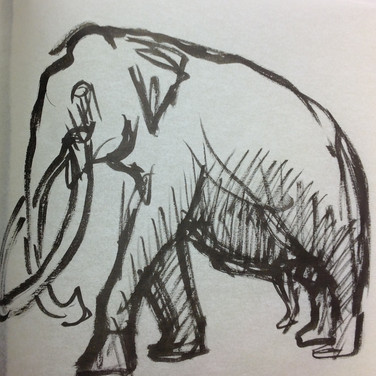 Marie Roberts drawing of Elephant