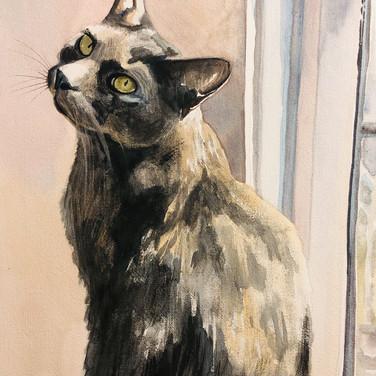 Jennifer Dodson, Rik, paint on paper