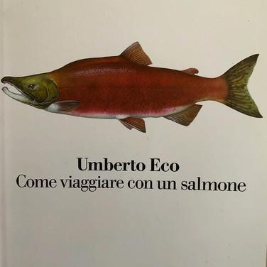 Bookcover Umberto Eco Come viaggiare con un salmone, photograph Catherine to all