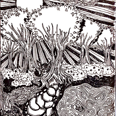 August Levenson, Artwork for a Friend who loves Nature