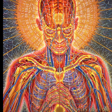 "Alex Grey, ""Oregon Eclipse"", 2017, screen shot (from google search)of painted image"