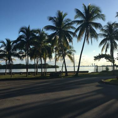 Glendalys Medina, Miami,