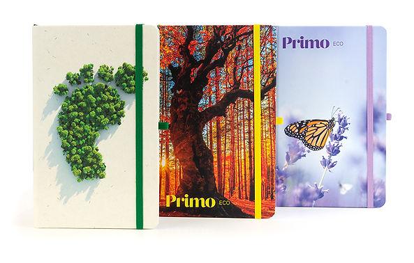 Primo_Eco_Group_3.jpg