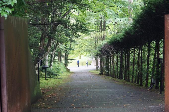 散歩 セゾン現代美術館 美しいお庭