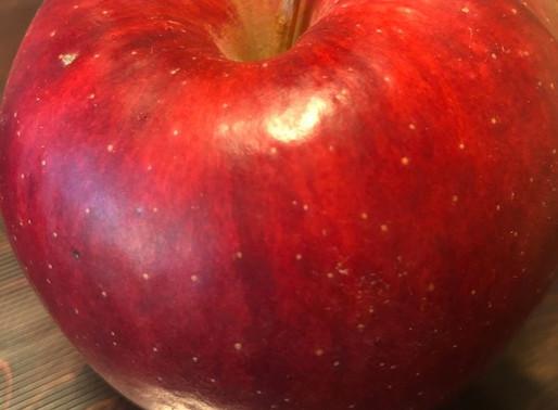 羽咋と自然と奇跡のリンゴ