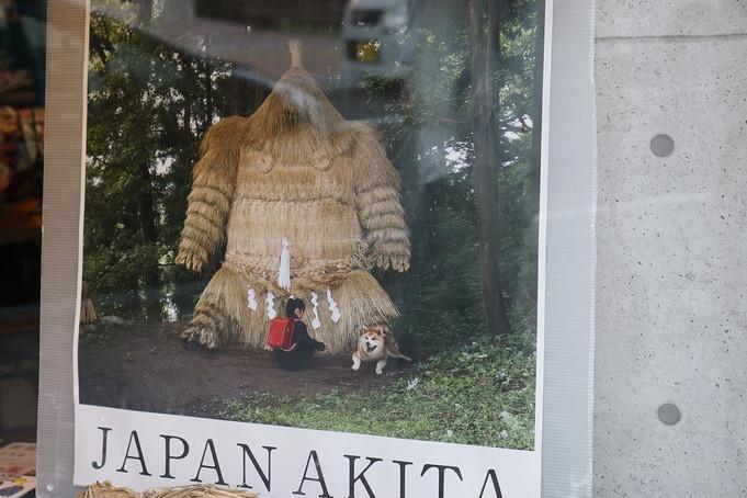 秋田1:アーツセンターあきた、「踊る。秋田」、油谷コレクション