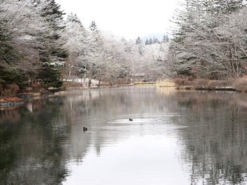 冬の軽井沢 雲場池