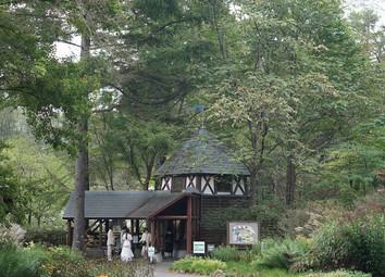軽井沢 ムーゼの森