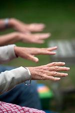 Gentle hands.jpg