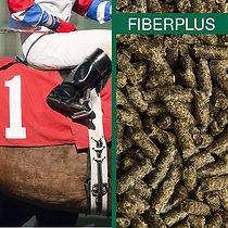 Fiberplus.jpg