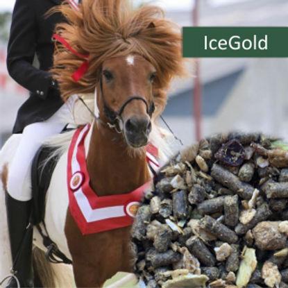 Ice gold.jpg