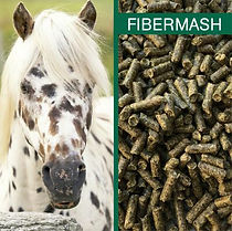 Fibermash2.jpg