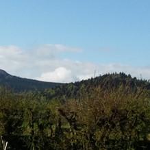 Le Lizieux et le mounier depuis le parc.
