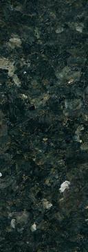 Labrador Vert