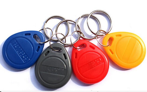 DSPP KEYFOBS (#DS-SDF4)