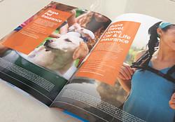 28pp A4 BluePrint Brochure