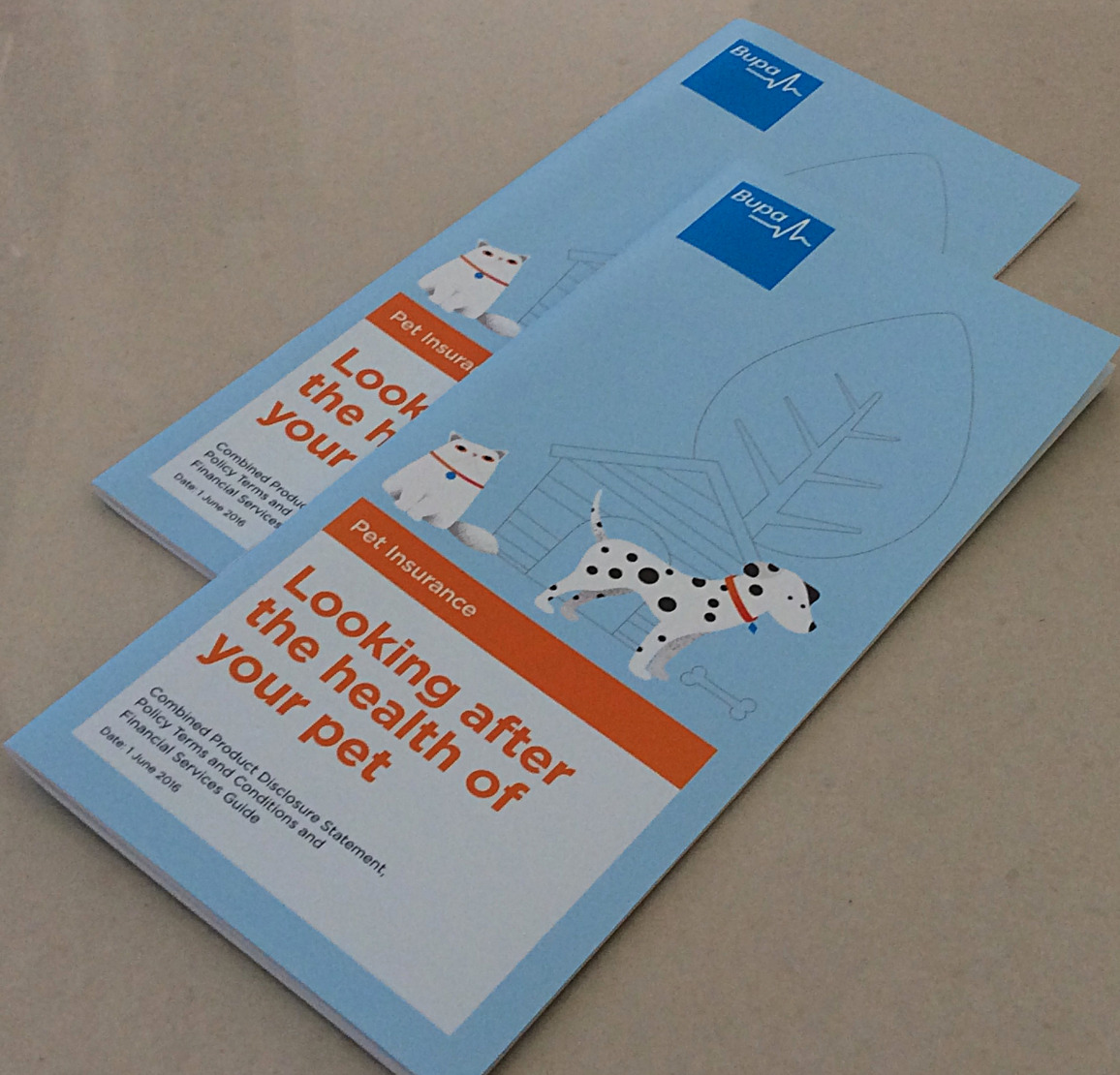 4pp Cover + 36pp Text DL Brochure