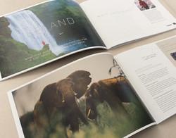 A5 Landscape Brochures