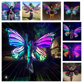 Butterfly Wings Collage.jpg