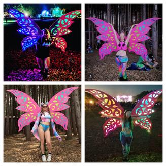 Fairy Wings Collage.jpg