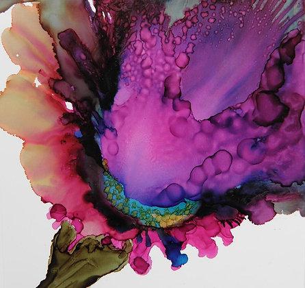 """""""Iris Spray"""" signed print"""