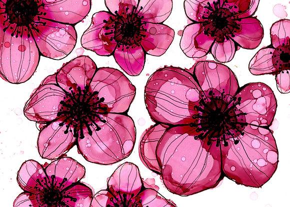 """""""Pink Petals"""""""