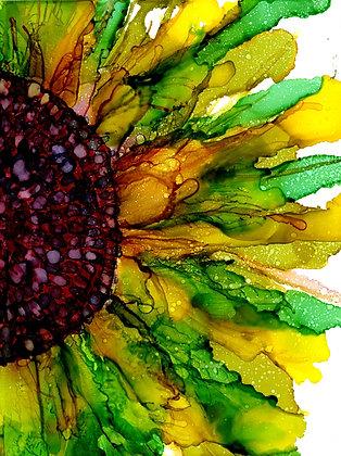 """Sunflower no. 14"""
