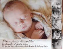 Ward Birth Announcement_5x7.jpg
