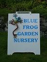 Blue Frog Sign.jpg