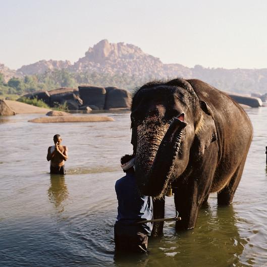 Hampi - Temple Elephant