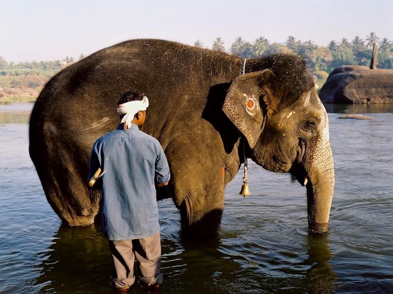 Hampi_Temple_Elephant_Bath_1.jpg