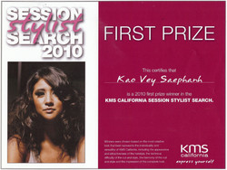 2010 KMS Session Stylist Search