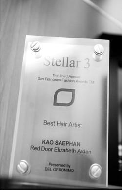 2010  Best Hair Artist